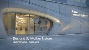 The Roca Gallery – Designs by Mother Nature – Biomimetic Products